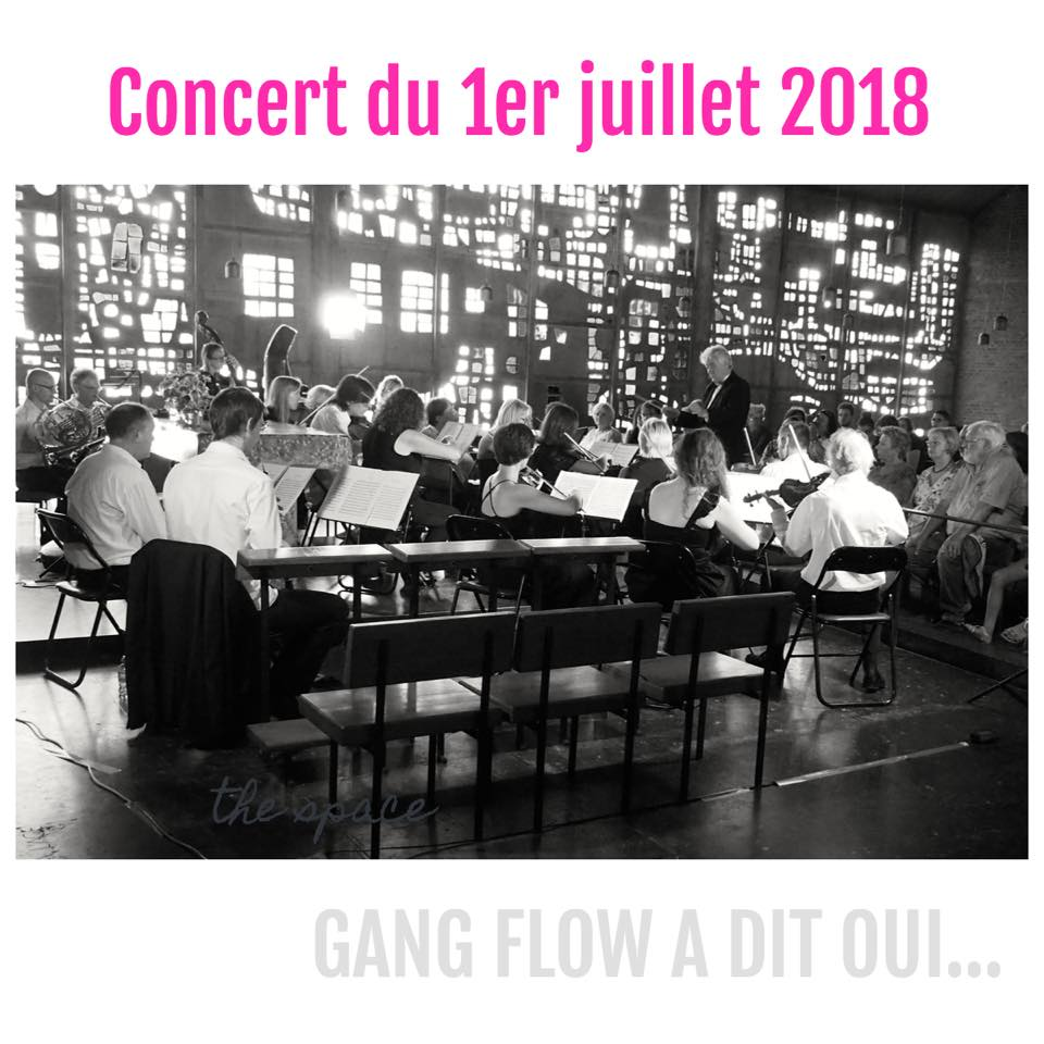 Photo of the concert given by the Gang Flow ensemble on July 1st, 2018
